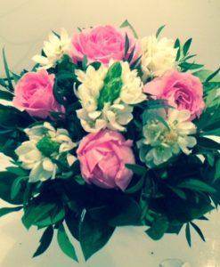 Růže a ornithogazum - rozvoz květin Olomouc