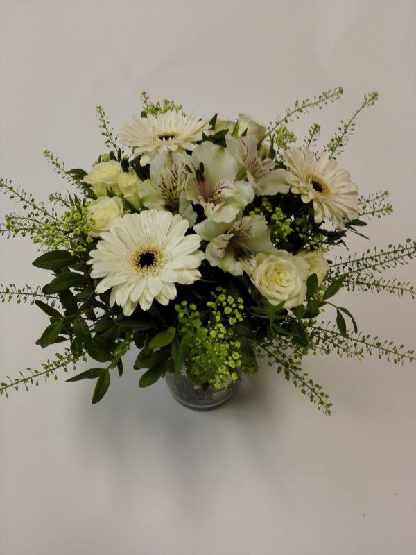 Minigerbery, minirůže – rozvoz květin Olomouc