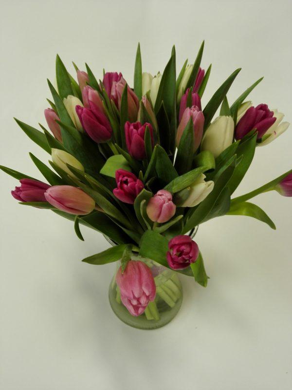 20 tulipánů