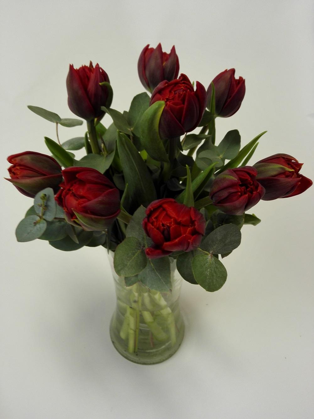plnokvěté tulipány 9 ks - doručení květin v Olomouci a okolí