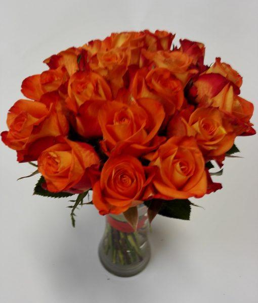 růže oranžové 18 ks