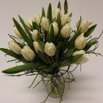 bílé tulipány - doručení květin Olomouc
