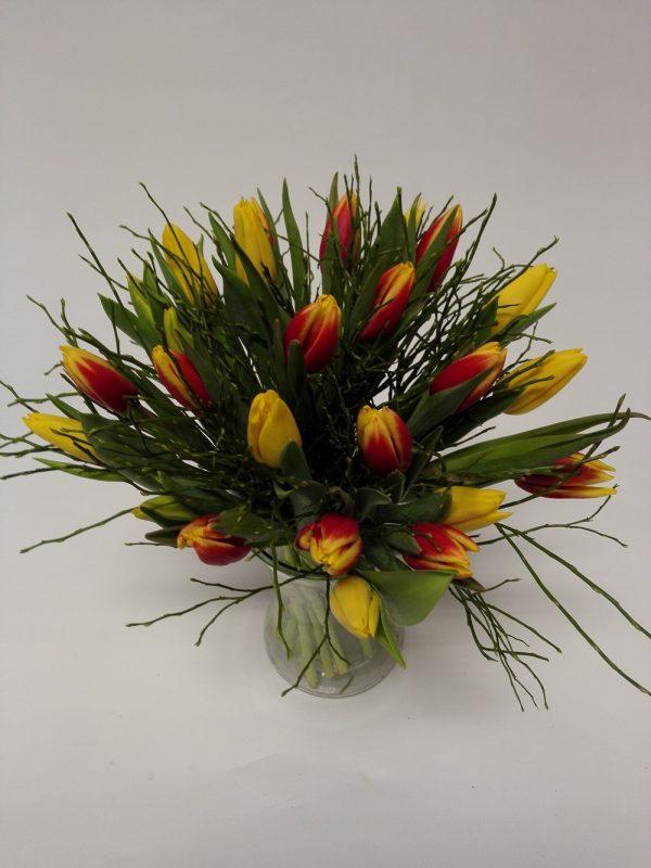 tulipány – rozvoz květin Olomouc