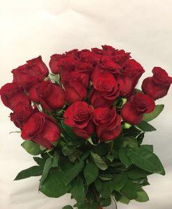 Rudé růže 30 ks - krátké - rozvoz květin Olomouc