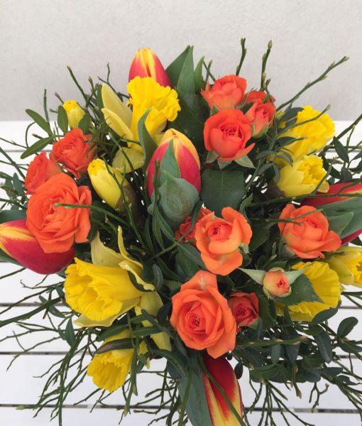 tulipány a narcisy
