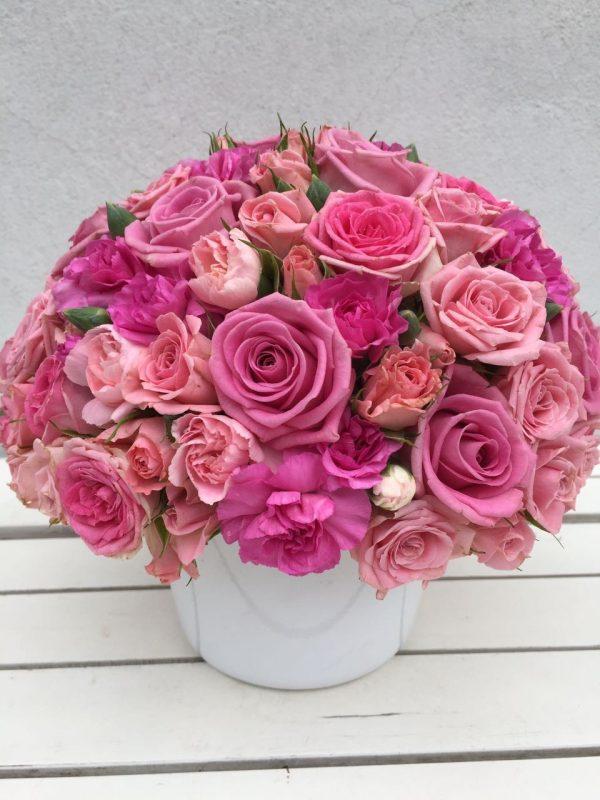 růže květiny olomouc