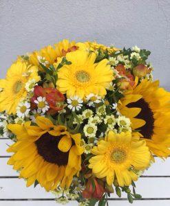 slunečnice - rozvoz květin Olomouc