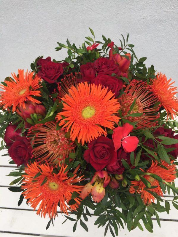 rozviz květin olomouc