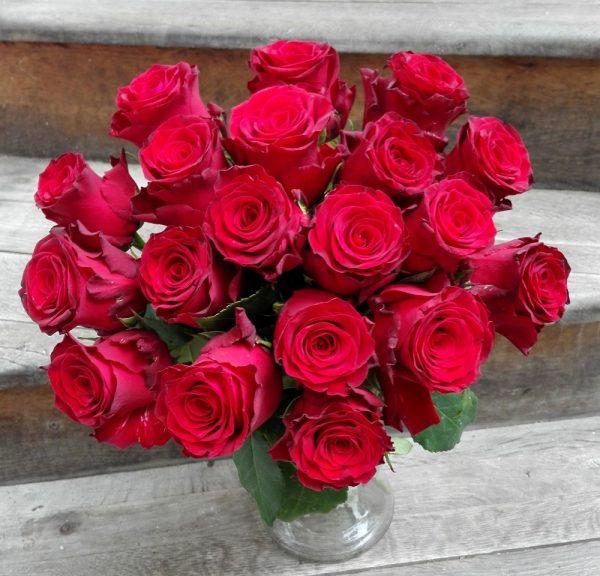 krátké rudé růže