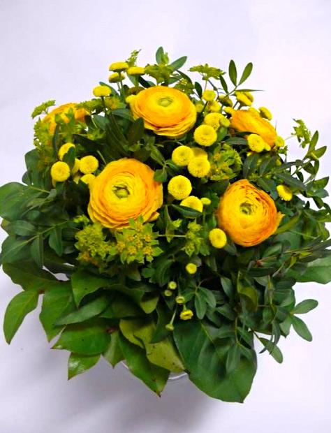 Ranunculus a Tanacetum – rozvoz květin Olomouc