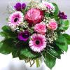 Kytička Růžová s fialovou